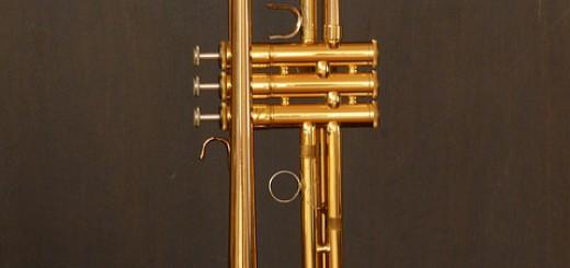 trumpet-7975_640